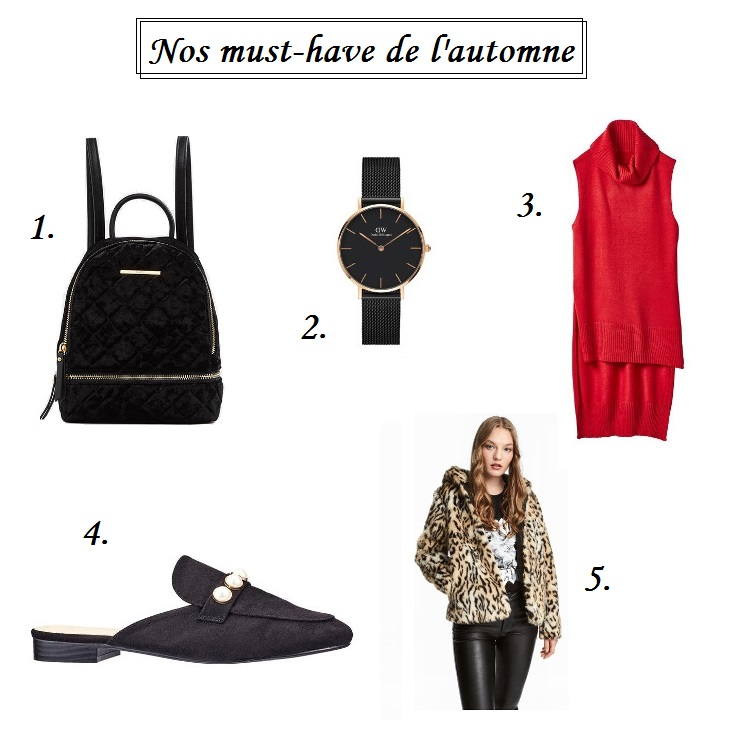 must-have-automne